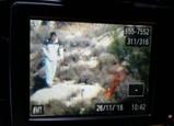 اعتقال 10 فلسطينيين بشبهة إضرام النيران