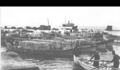 يافا 1948-غناء فيروز