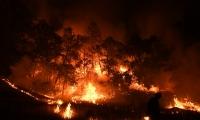 ارتفاع عدد ضحايا حريق كاليفورنيا الى 7