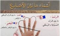 أسماء ما بين الاصابع