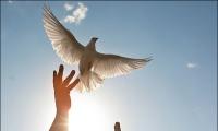 نصائح وتوجيهات للشباب- حب الخير دليل الإيمان