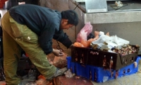 تقرير: إسرائيل صاحبة أعلى معدلات للفقر بين الدول المتقدمة ونسبة الفقر فيها تبلغ 21%