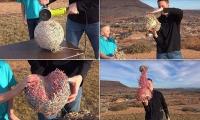 شاهدوا : ماذا يحدث عند قطع كرة مطاط بمنشار كهربائي
