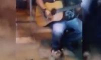 فيديو: موسيقي يعزف لجمهور من القطط