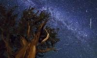 الليلة: كميات من الشهب في سماء البلاد