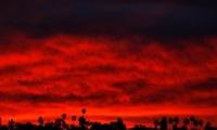 مقتل 71 شخصا والبحث عن ألف مفقود بأسوأ حريق غابات في كاليفورنيا