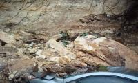صور - انهيار صخري على سيارة في ام الفحم واصابة السائق