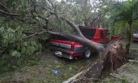 إعصار إيرما المدمر يضرب فلوريدا