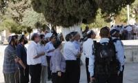 عشرات المتطرفين يقتحمون ساحات المسجد الاقصى