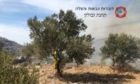 الاطفاء تحذر المزارعين من اشعال الحرائق خلال موسم الزيتون