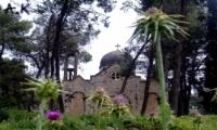 معلول قرية فلسطينية  قضاء الناصرة هجرت عام  ال48