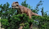 العلماء يؤكدون: الديناصورات لم تنقرض