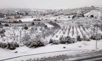 تساقط الثلوج في القدس .. وتوقعات بدخول جبهة هوائية باردة جديدة مساء اليوم