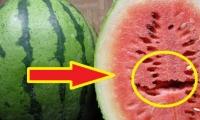 اذا رأيت هذه الشقوق على البطيخ.. ارمها فوراً!