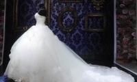 فستان زفاف لم تجرؤ أي عروس على ارتدائه..والسبب؟