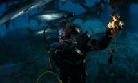 شهر تحت الماء لإثبات نظرية مرعبة